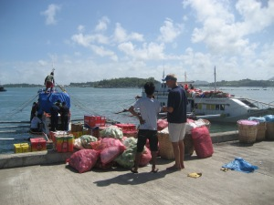 Port to Island