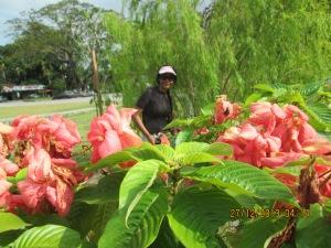 Panang Botanical Gardens
